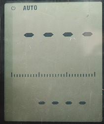 DSC_8694