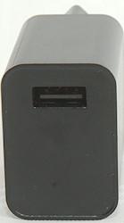 DSC_9501